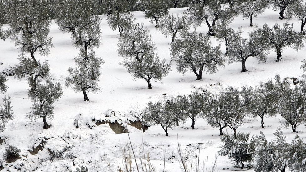.Intensa nevada en la localidad alicantina de Benassau
