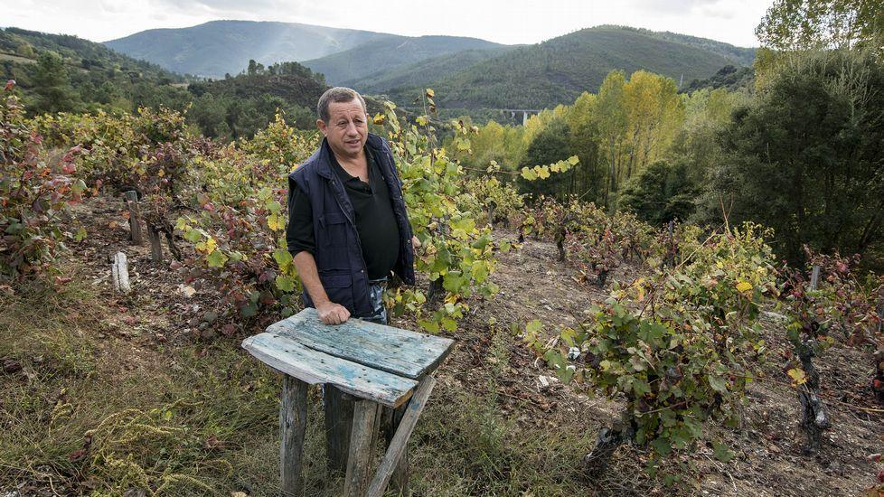 Un viejo pousadoiro para los cestos de uvas en las viñas de Arribada