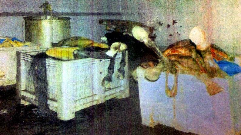Las naves de As Neves almacenaban de forma ilegal contenedores llenos de cadáveres de animales