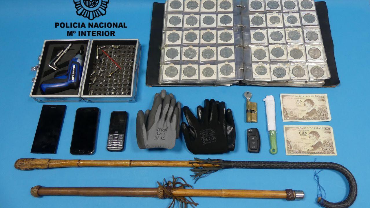 La Guardia Civil libera una partida de aves capturadas en Redondela