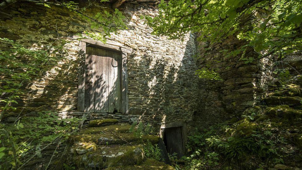 Entrada de uno de los sequeiros de la localidad, que se hallan en estado de abandono