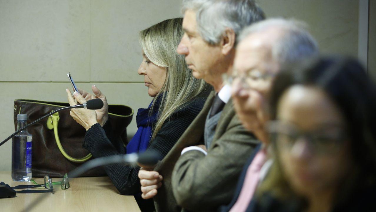 Comienza el juicio al Chicle por el rapto de la joven de Boiro que precipitó su detención.Marina Castaño, en la última sesión del juicio