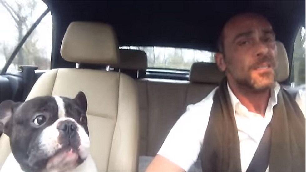 El perro que «canta» por Rihanna