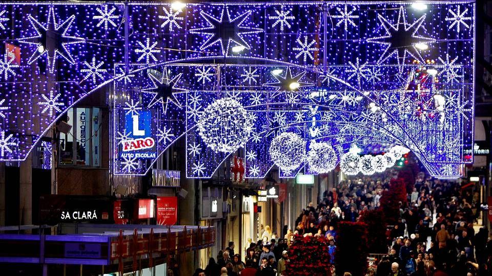 Un oso pardo cantábrico.Encendido de las luces de navidad en Vigo.