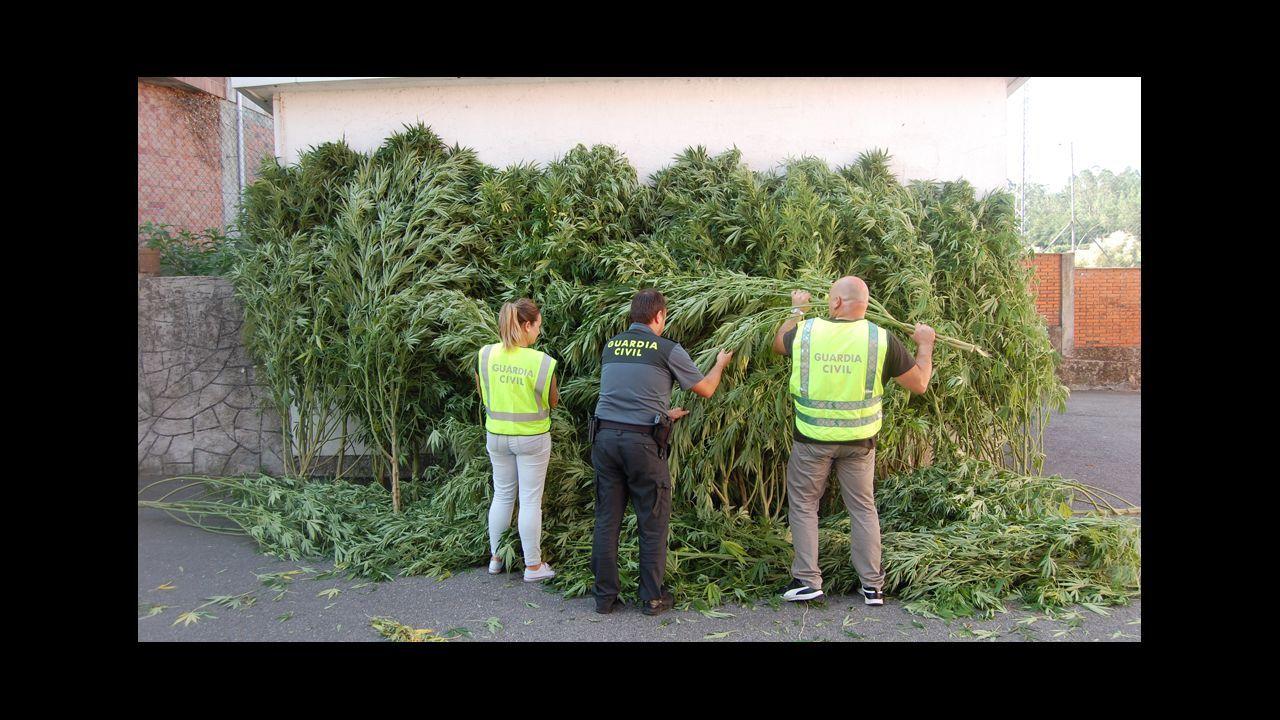 Se elevan a once los detenidos por el alijo de 8.740 kilos de cocaína en Algeciras, uno de ellos guardia civil