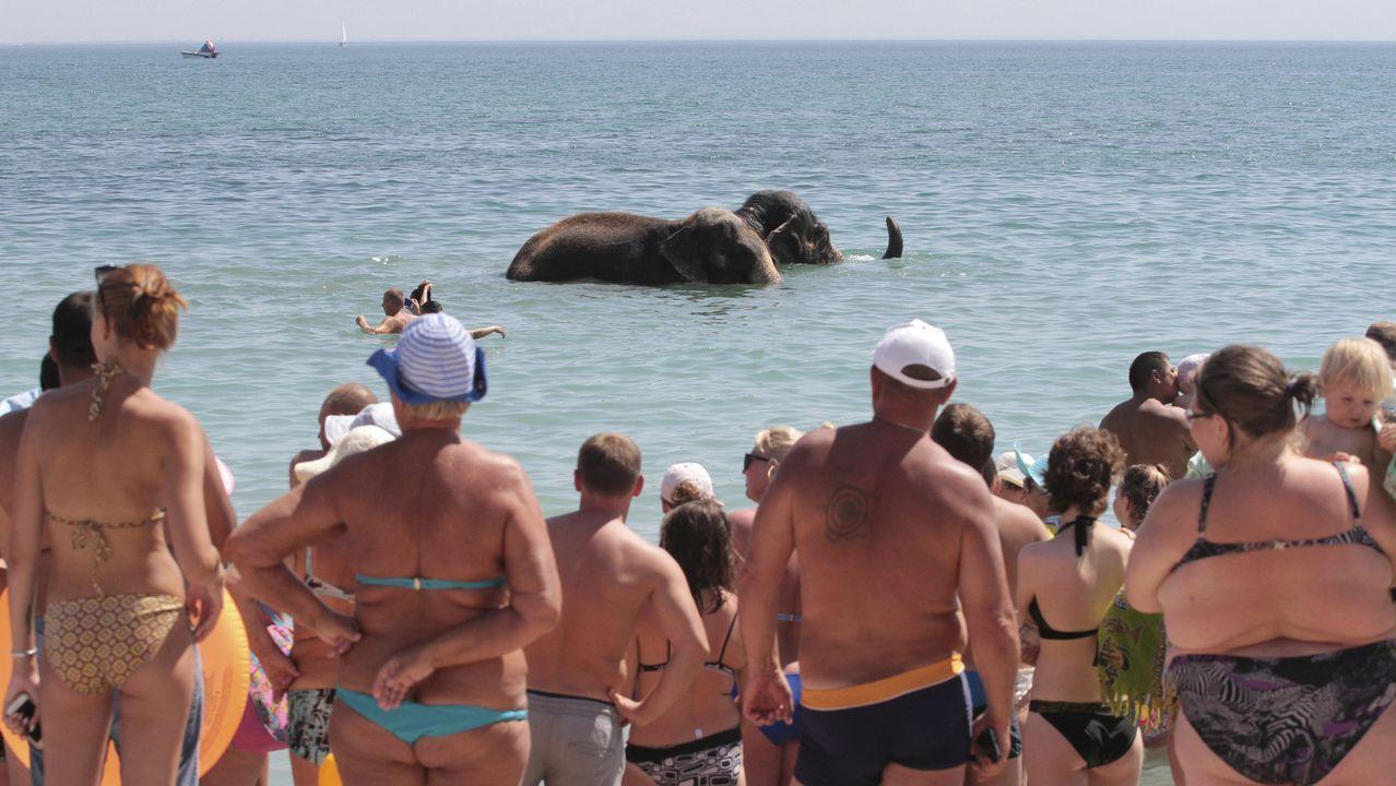 Un grupo de gente observa cómo un elefante de un circo local se da un baño en el mar Negro, en Crimea