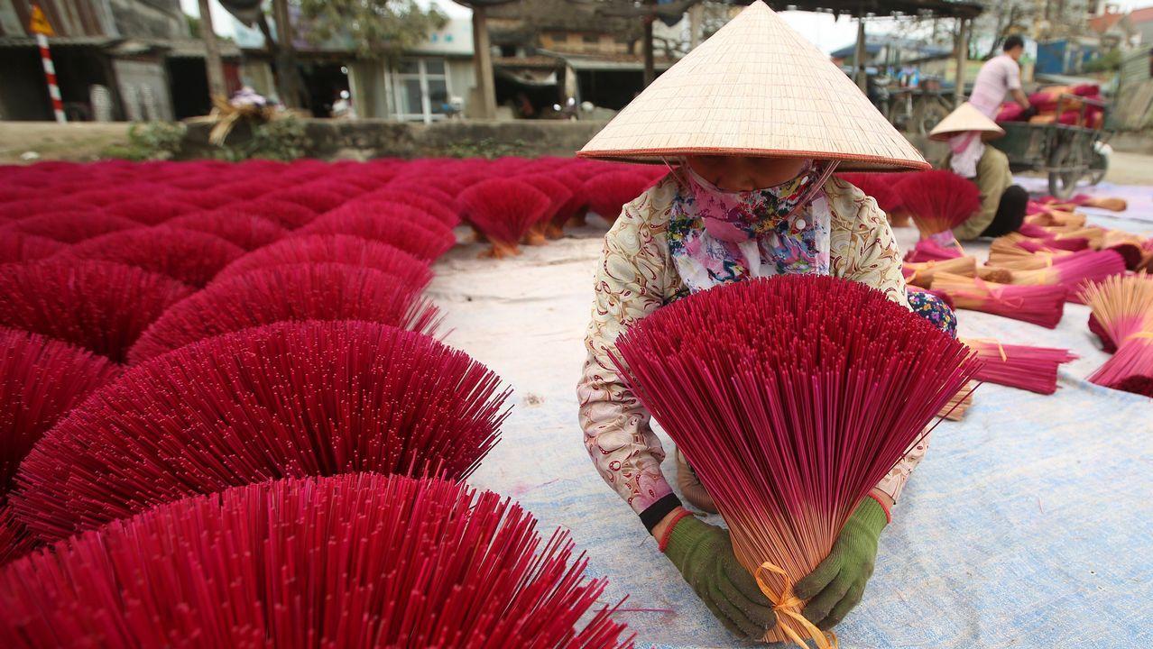 Una mujer coloca varillas de incienso para secar en Quang Phu Cau, a unos 40km de Hanoi en Vietnam. La localidad de Quang Phu Cau, que comenzó con la fabricación de incienso hace más de 100 años, se prepara para las celebraciones de Año Nuevo. Quang Phu Cau exporta incienso a China, India y Malasia