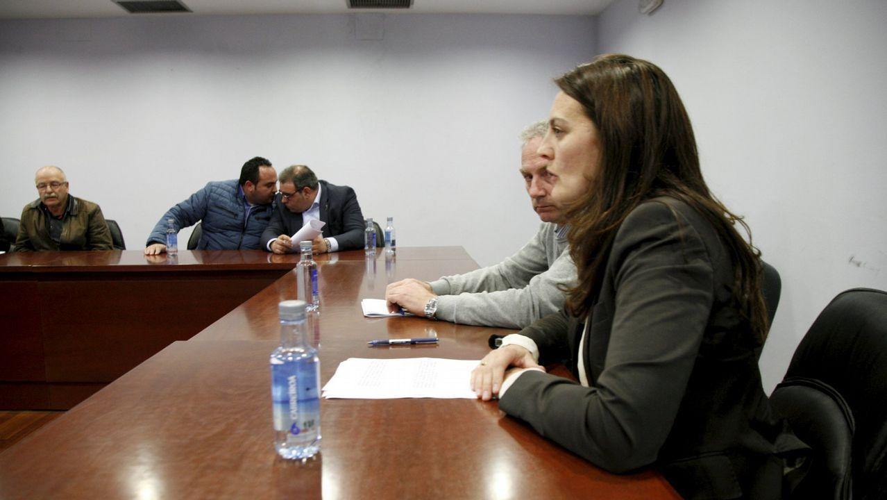 Dos detenidos en Sobrado dos Monxes por cultivar cerca de 800 plantas de marihuana