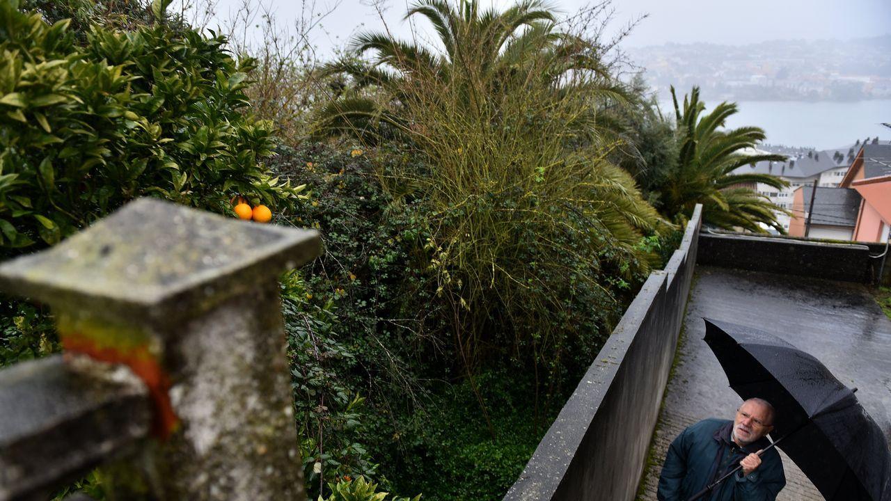 Suelta de un ratonero en la comunidad De Montes de Baroña
