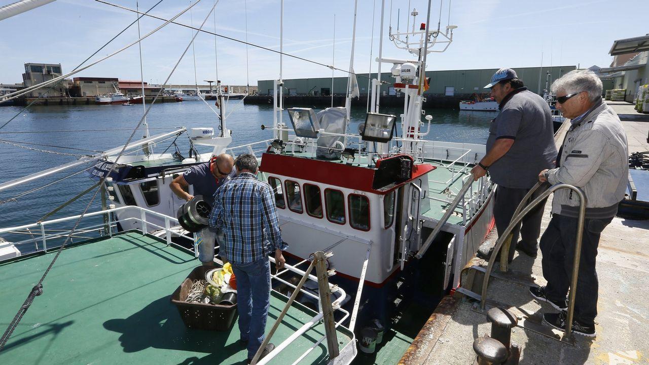 79 detenidos por traficar con atún rojo ilegal.O ciclo biolóxico da anguía faina moi vulnerable