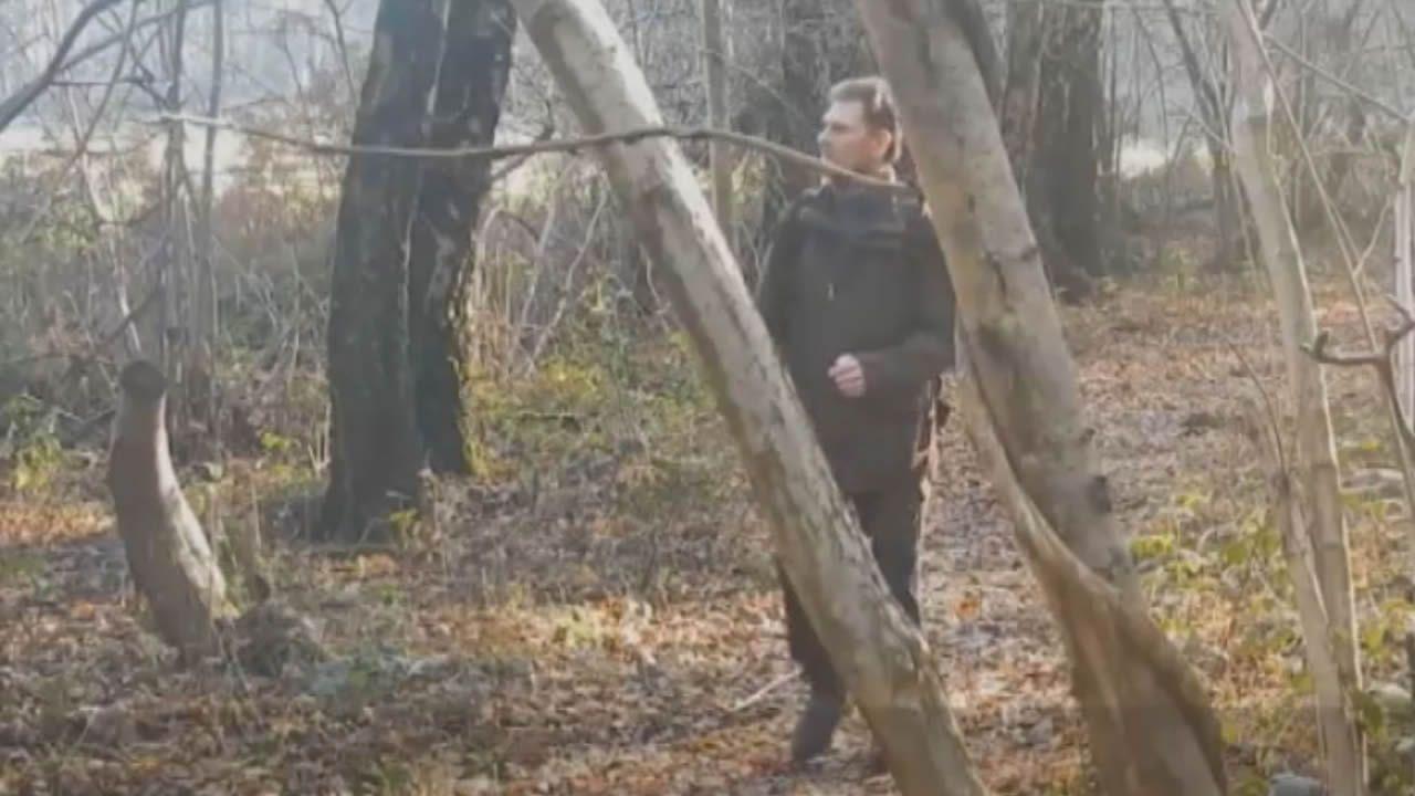 El detenido por violar y matar a un niño de 11 años sobrevivía en un bosque de Barcelona.Un oso pardo