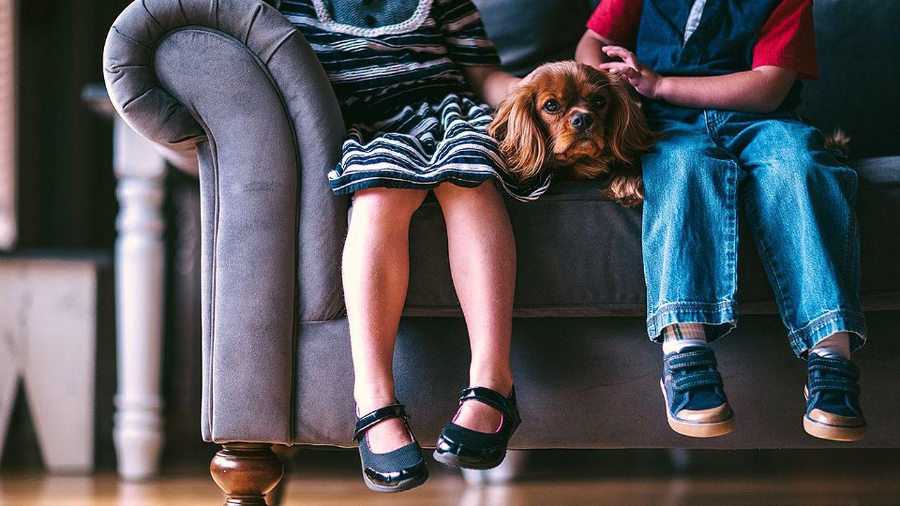 «E quen me paga a min en Barreiros?».Dos niños acarición a un pero sentados en un sofá