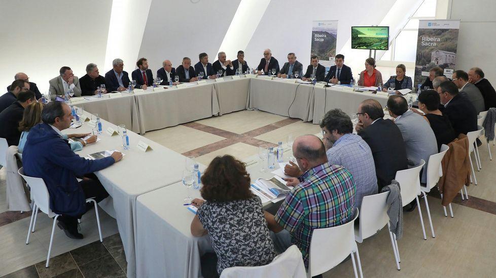 .El conselleiro de Cultura, Román Rodríguez, se entrevistó con los 21 alcaldes de Ribeira Sacra