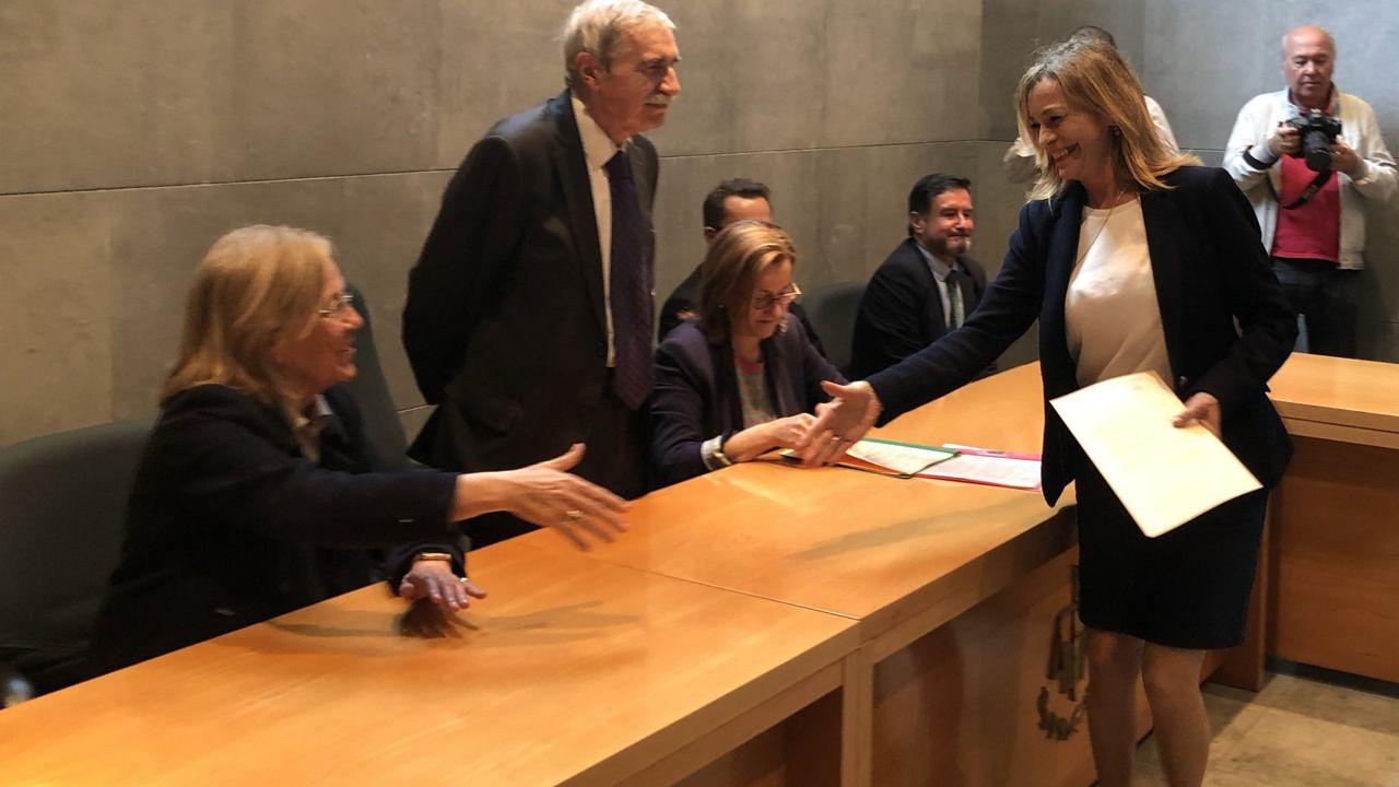 Ángela Vallina recoge el acta de diputada