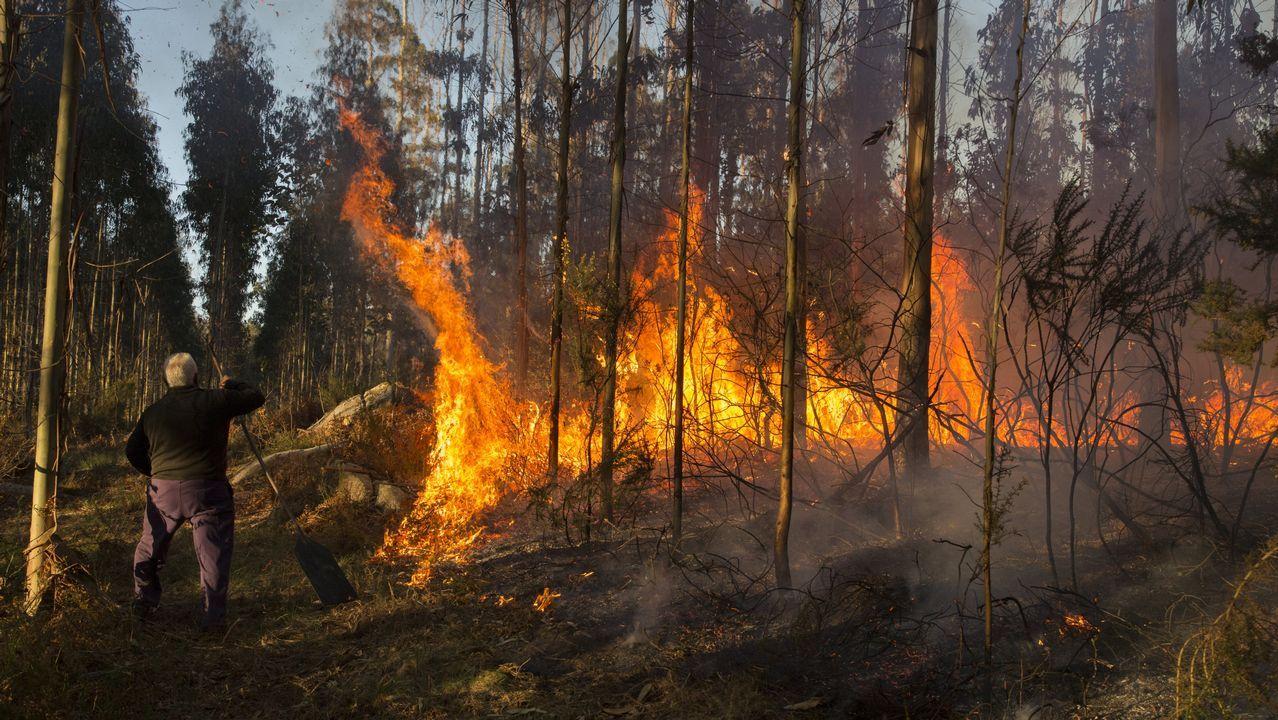 Alarma en Baio por un incendio en las proximidades el área industrial de O Allo