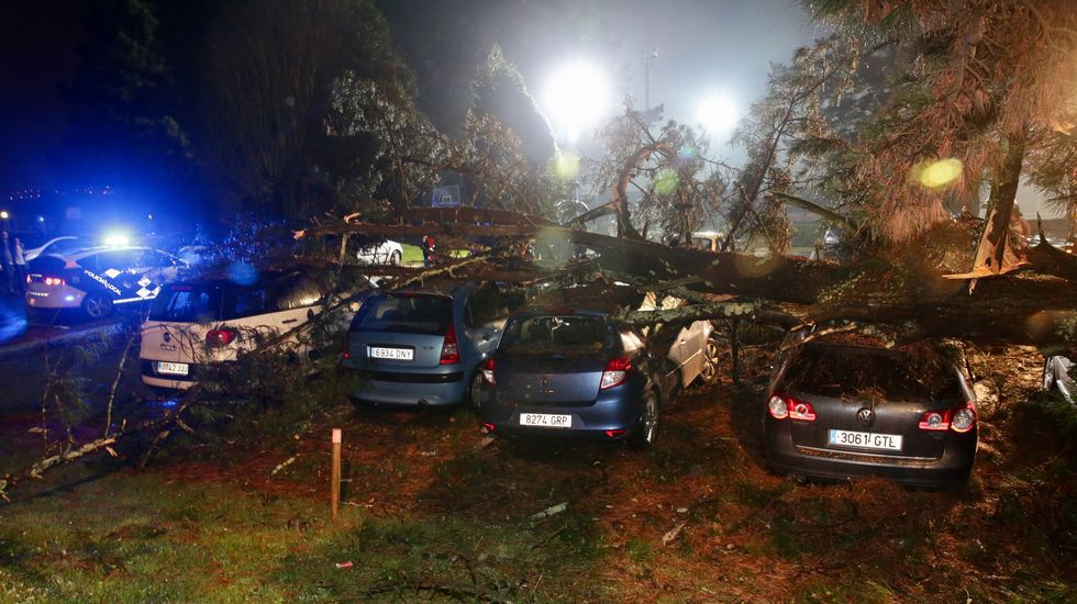 Un pino cae sobre ocho coches en Acea de Ama