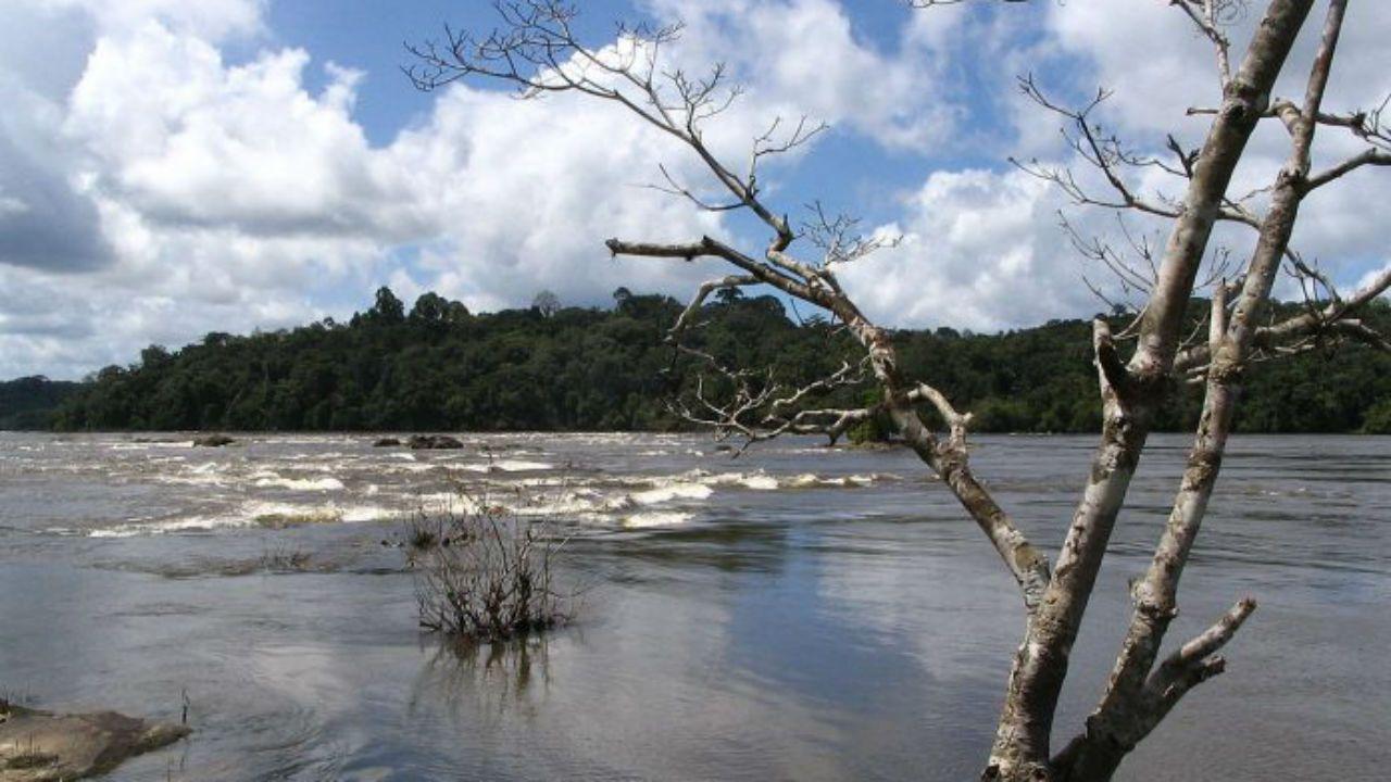 Parque Nacional de las Montañas de Tumucumaque