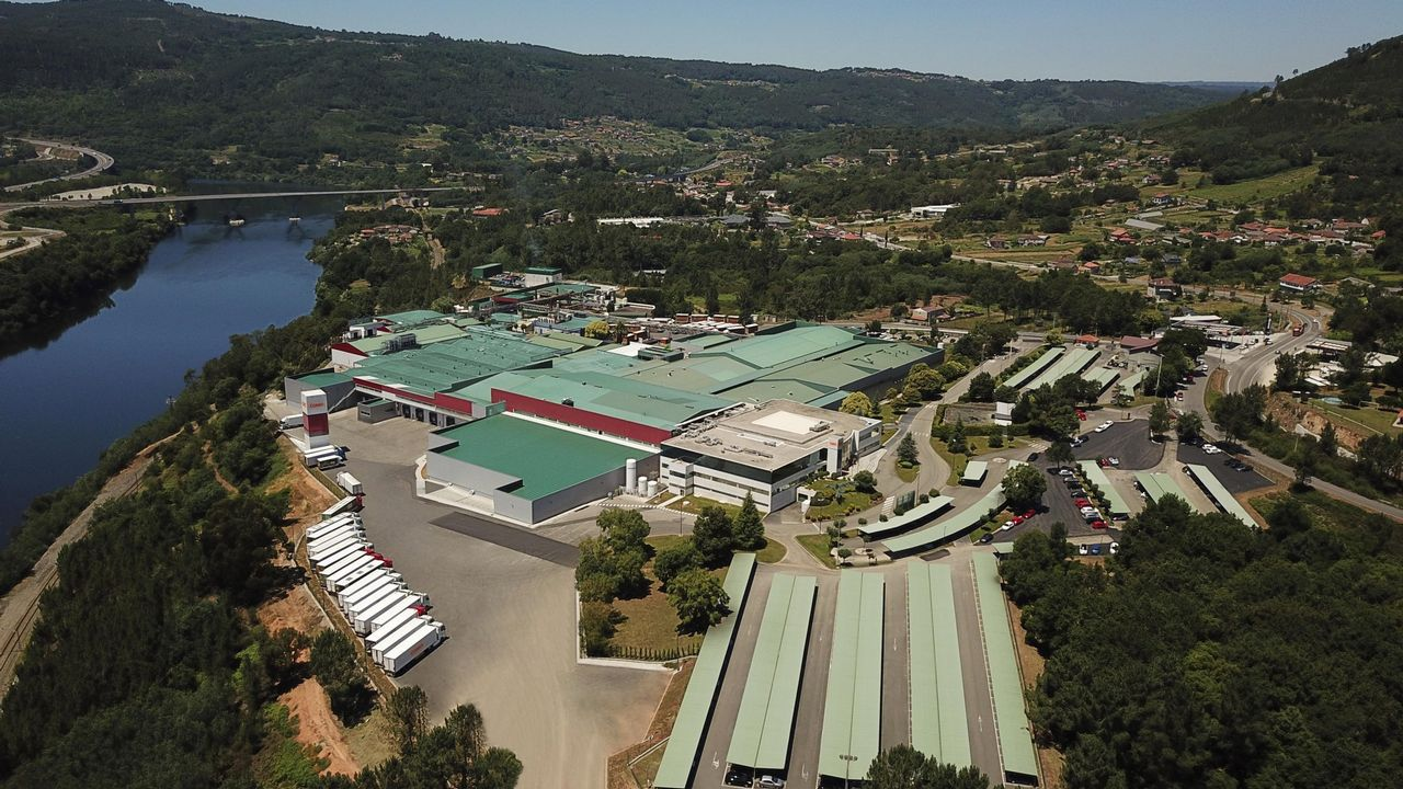 ¿Cómo están integrando las empresas gallegas las nuevas tecnologías?.Madera en el puerto de Burela