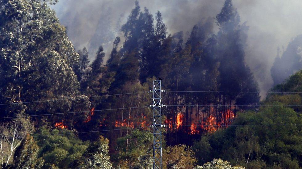 Uno de los incendios forestales registrados en Llanes y en cuya extinción trabajan los Bomberos del Servicio de Emergencias del Principado (SEPA)