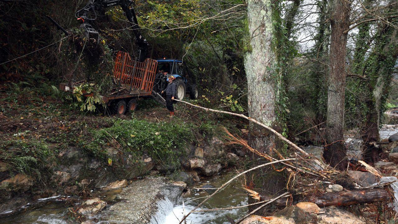 ¿Estuviste en la Festa do Botelo? ¡Búscate!.Limpieza del río tras las inundaciones que sufrió Viveiro en noviembre