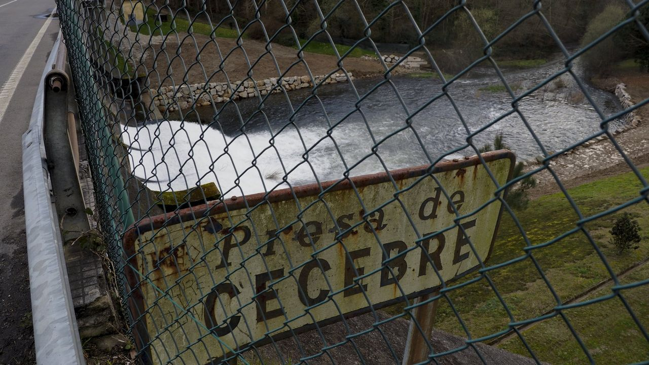 Portal de Belén en Ledoño, Culleredo.PSOE Sada