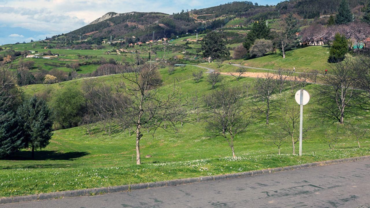 Parque Purificación Tomás de Oviedo