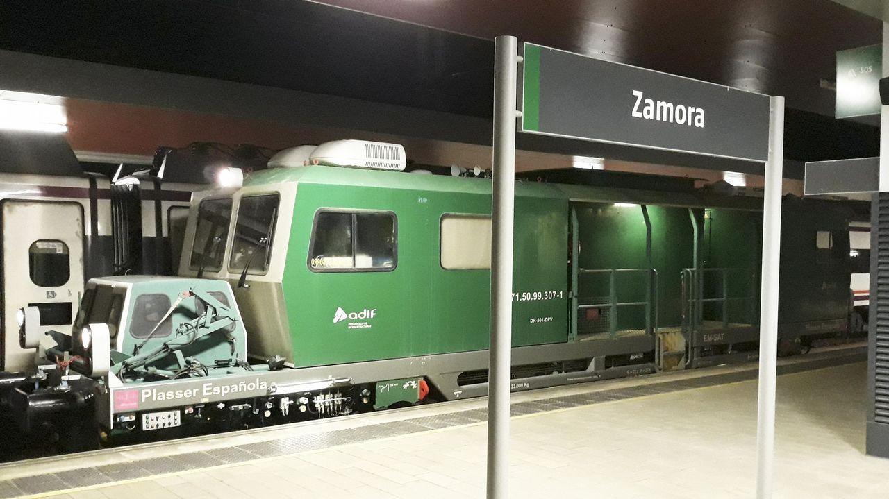 Accidente mortal en Arbo.El tren auscultador del ADIF, en la estación de Zamora
