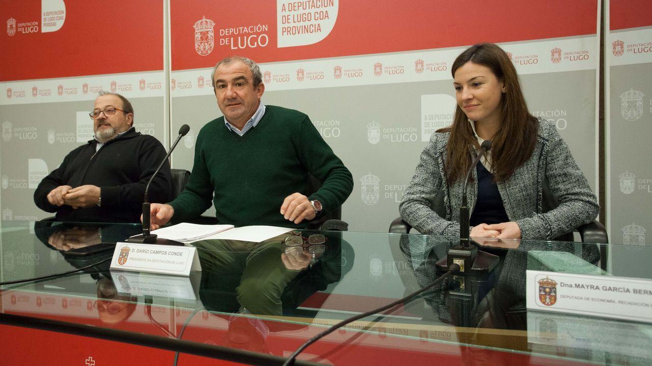 El último sillero de Tórdea.La comisionada nació en Valencia, pero su familia es originaria de Galicia