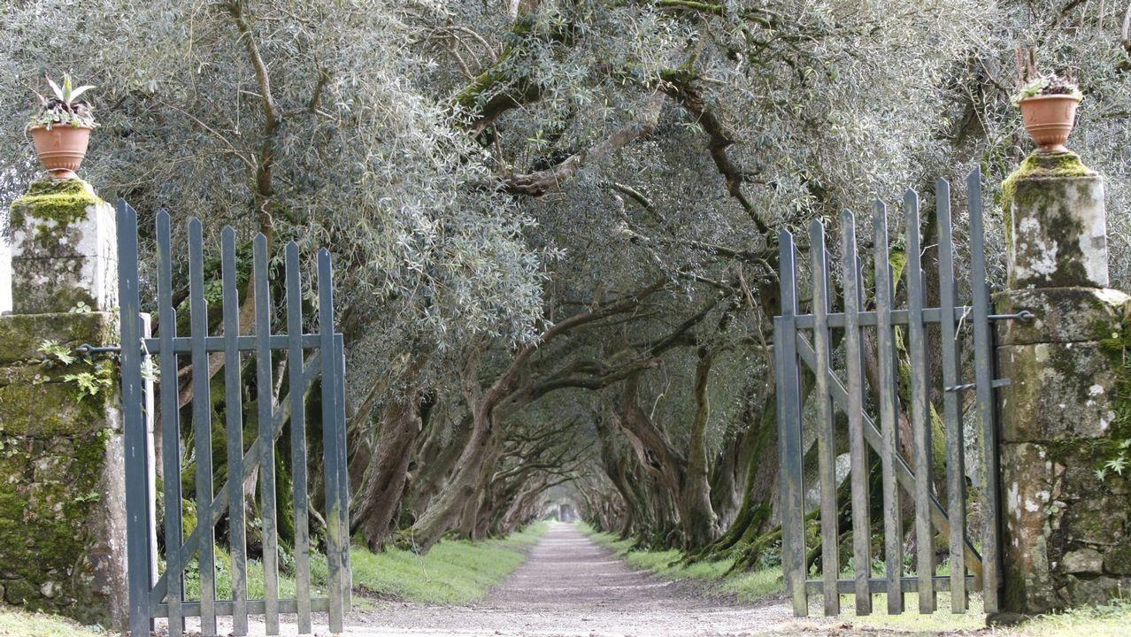 La Colexiata,lajoya arquitectónica deSar.Pazo de Santa Cruz de Ribadulla, que permite visitar sus valiosos jardines.