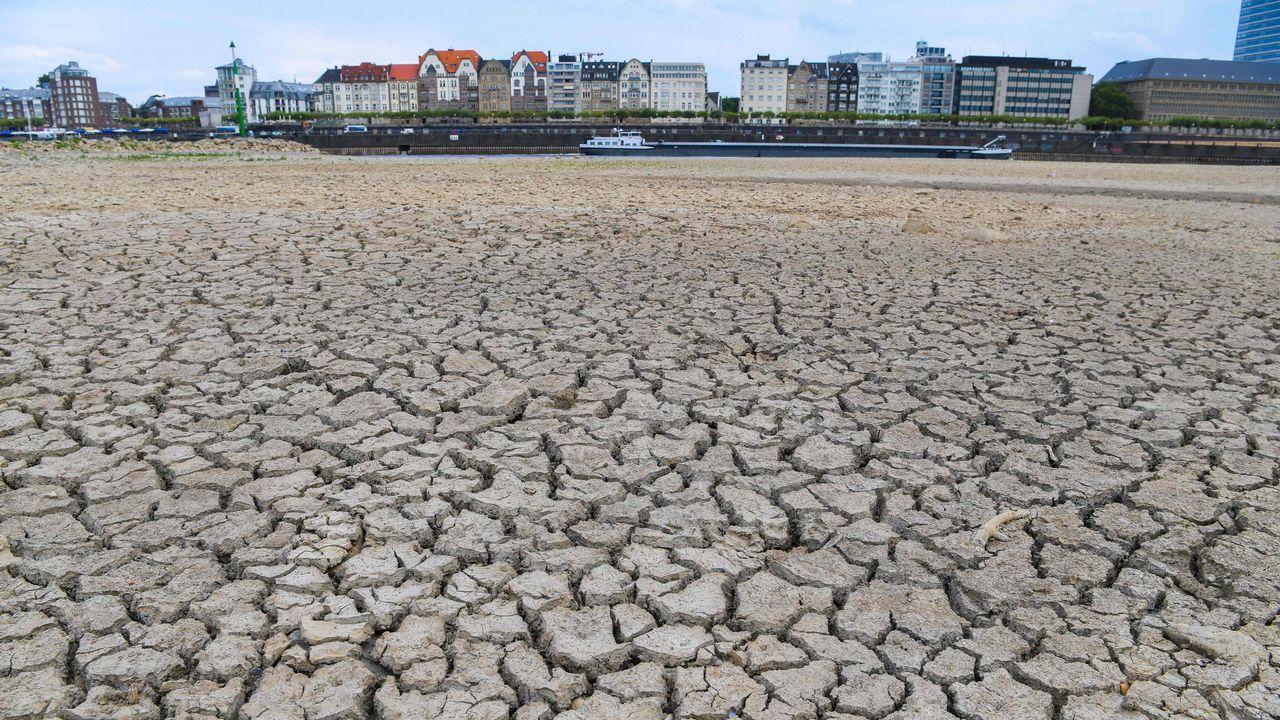 El lecho del río Rin se seca en Duesseldorf, al oeste de Alemania, mientras continúa la ola de calor.