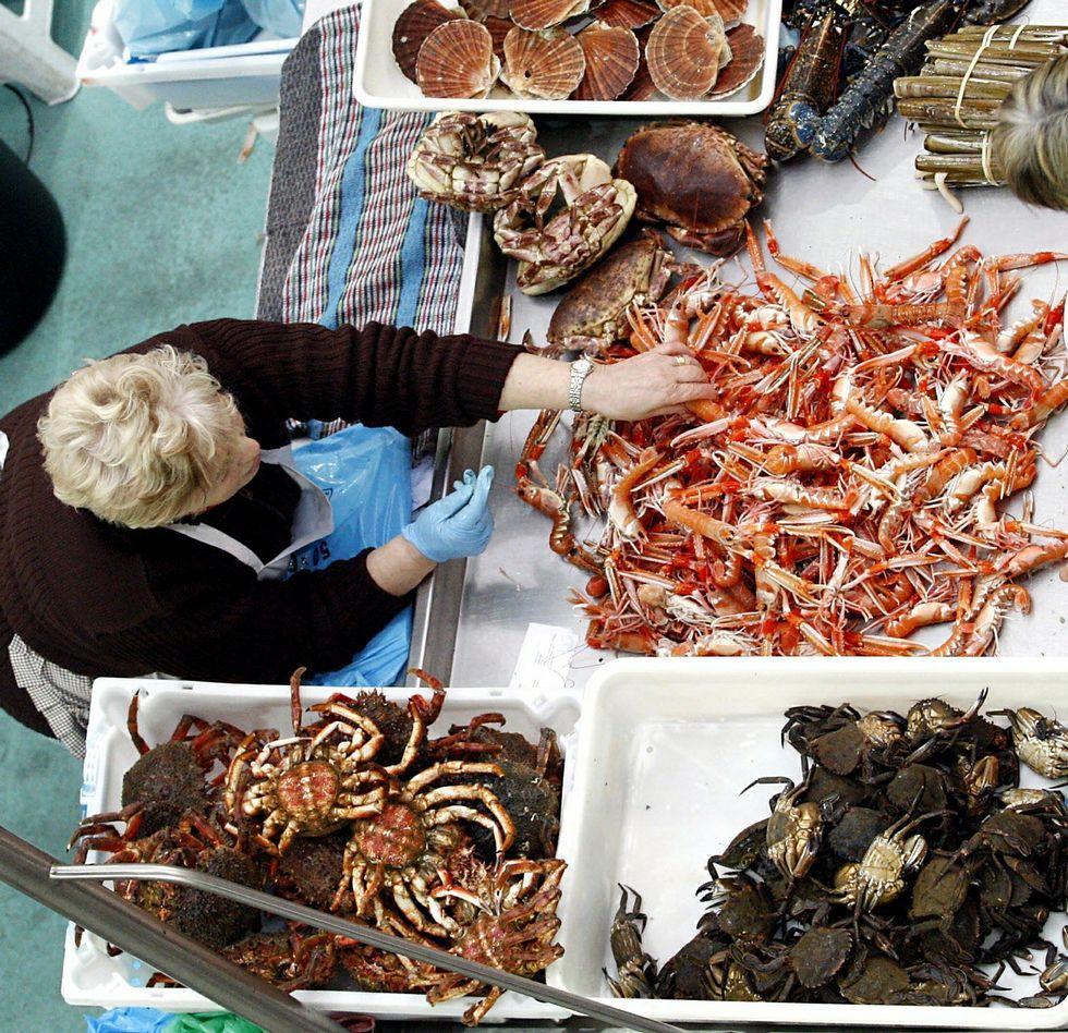 La venta de marisco para congelar anima las ventas en la plaza de Pontevedra<span lang= es-es > </span>