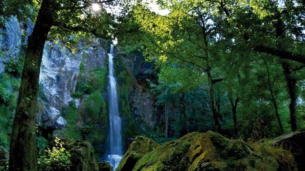 .El Arnoia. En Allariz, O Arnado y Acearrica disponen de espacios verdes a la orilla del río