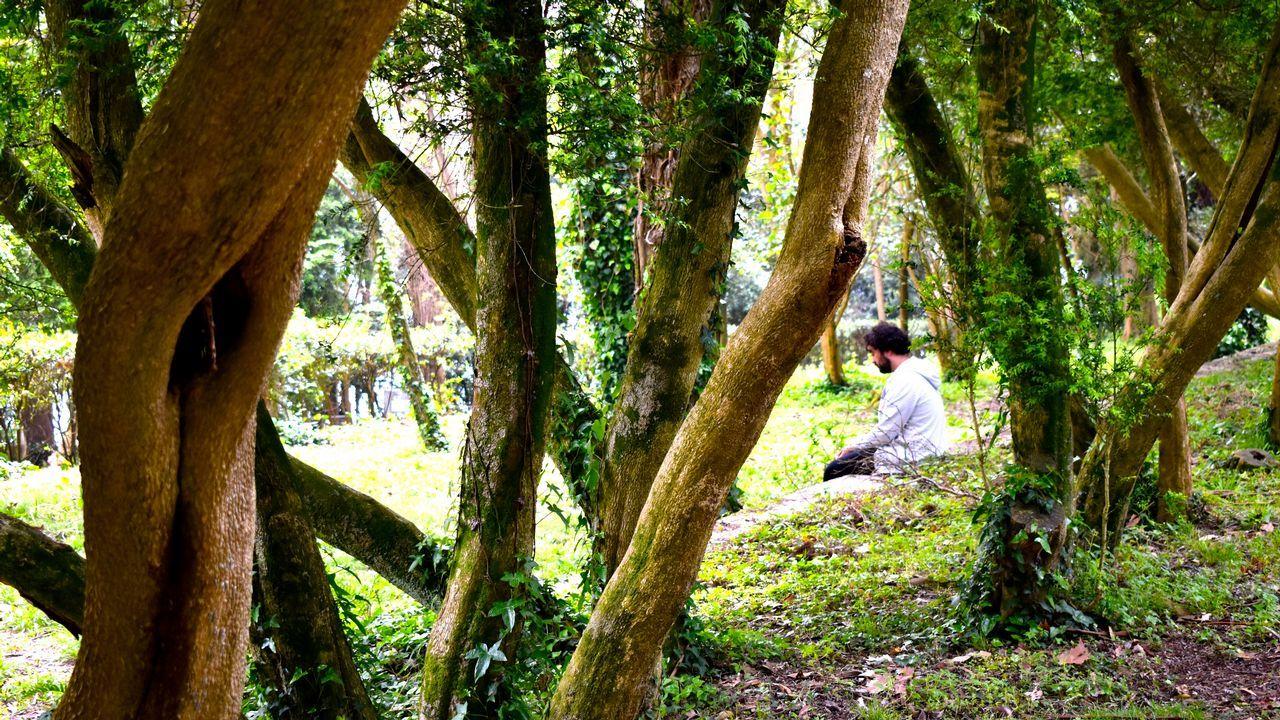 Este pazo en Santo Estevo do Castro de Amarante está a la venta por 1.300.000 euros. La fortaleza es BIC