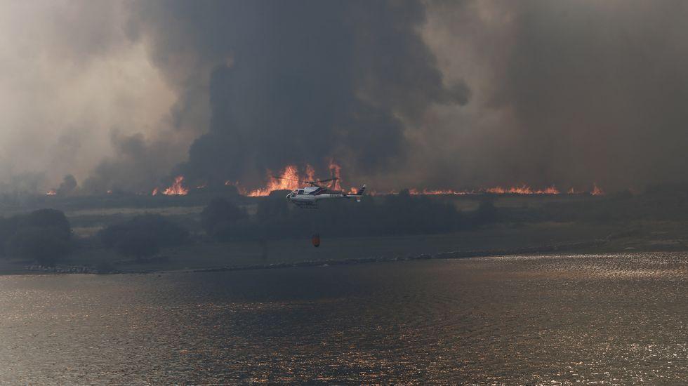 Calcinadas más de 1.000 hectáreas en los incendios que afectan a Oímbra y a Muíños