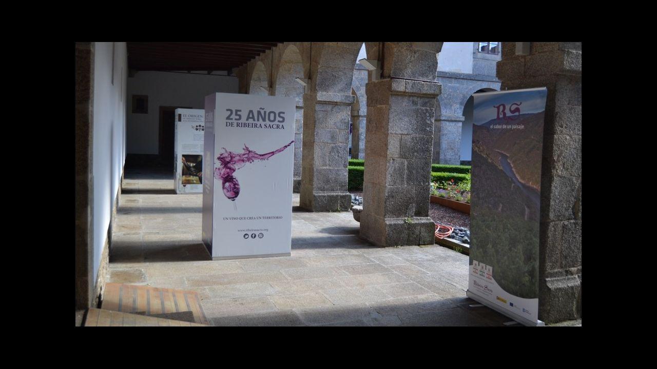 Las fotos de la ruta entre A Portela y Abeleda.Asunción Rodríguez, de la bodega Crego e Monaguillo