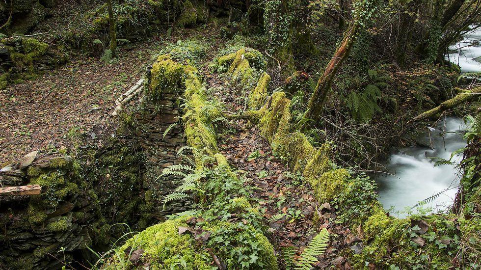 Un singular acueducto de madera y pizarra sobre el río Seceda, que sirvió para regar varios prados de la zona