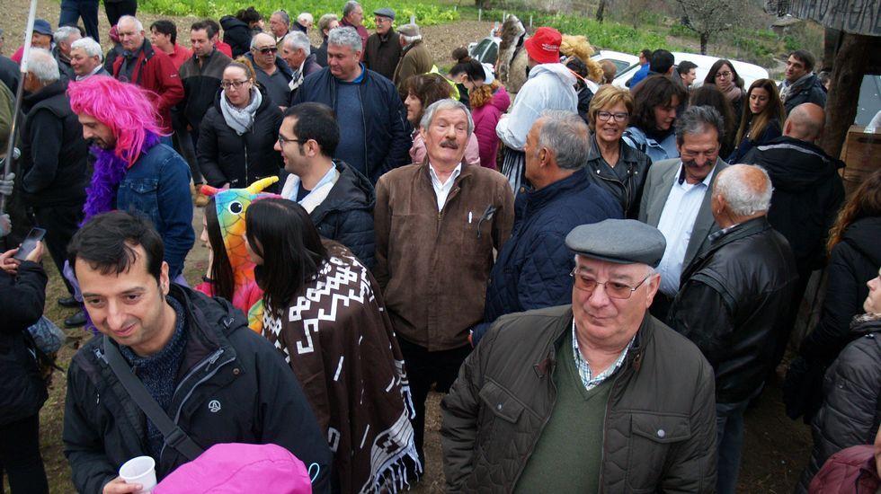 El Entroido Ribeirao reunió a numerosas personas