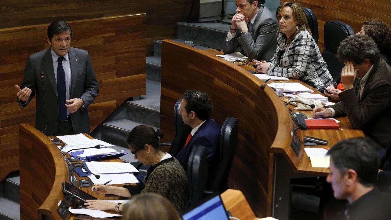 Javier Fernández, en el pleno