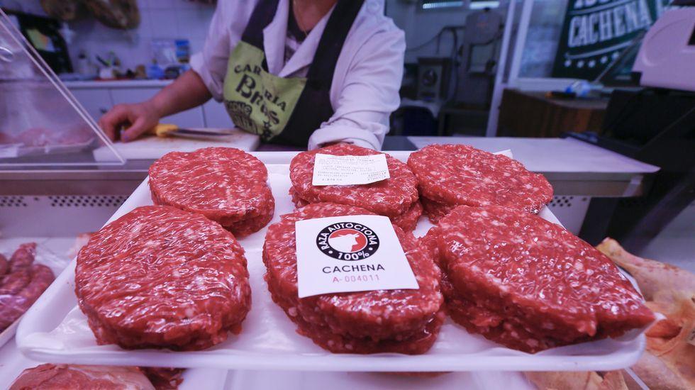 .La carnicería Brais, en Lugo, vende hamburguesa de vaca de raza cachena.