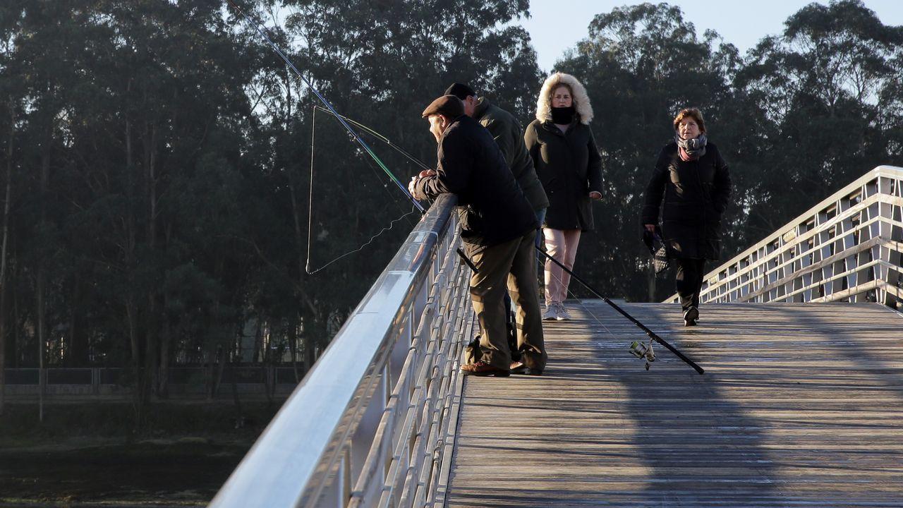 Heladas en la pasarela de O Terrón, en Vilagarcía