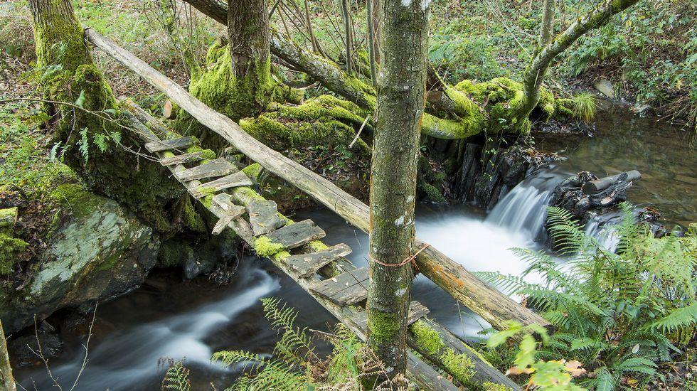 Una pasarela sobre el río de Penacova en el lugar de O Pillado