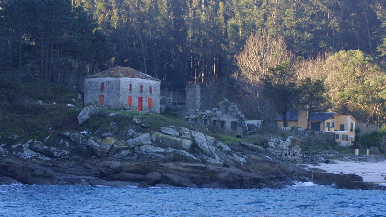 Así descubrieron en Vigo a la Phronima sedentaria, una extraña criatura del abismo marino.Julio Vilches, farero de Sálvora durante años y único habitante de la isla