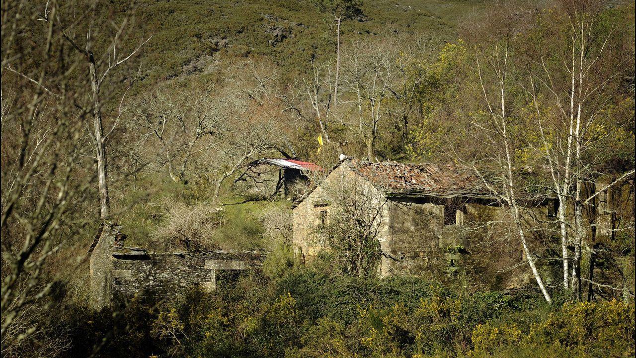 Ecovigilantes del Divina Pastora de Ourense en una recogida de colillas enel campus universitario