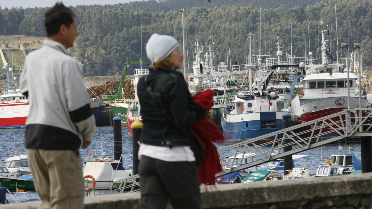 Oficina de empleo.Puerto de Celeiro está recibiendo numerosas consultas sobre un programa pionero en toda España
