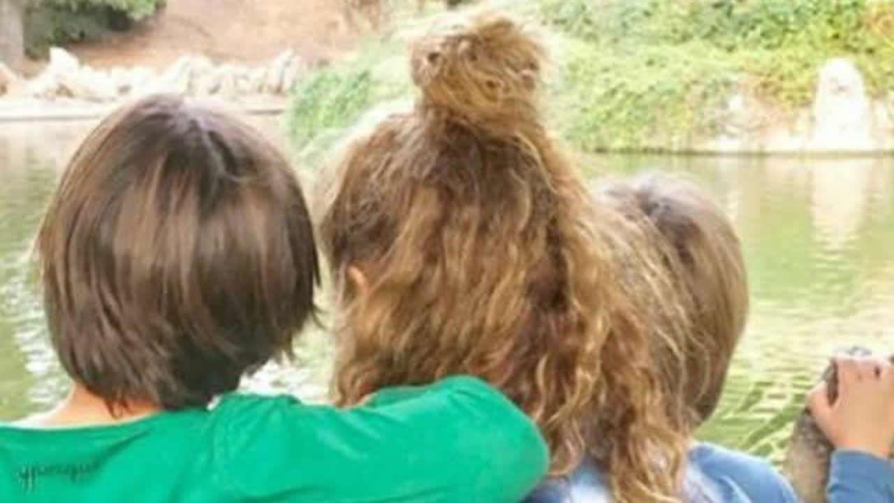 Shakira y Piqué, día en familia.Shakira, con sus hijos, en una imagen de archivo