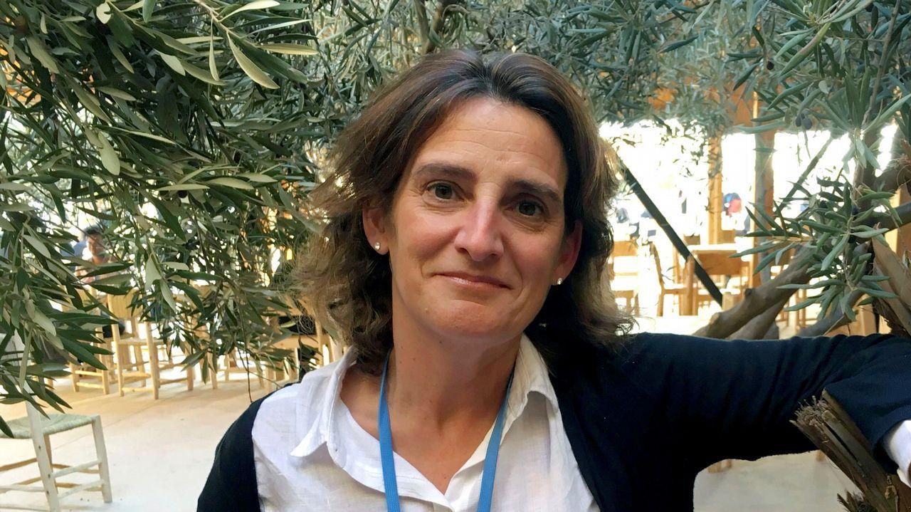 Teresa Ribera será la nueva ministra de Transición Energética y Medio Ambiente