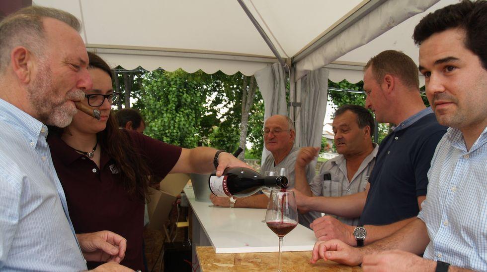 La gran fiesta del vino de Ribeira Sacra en imágenes.