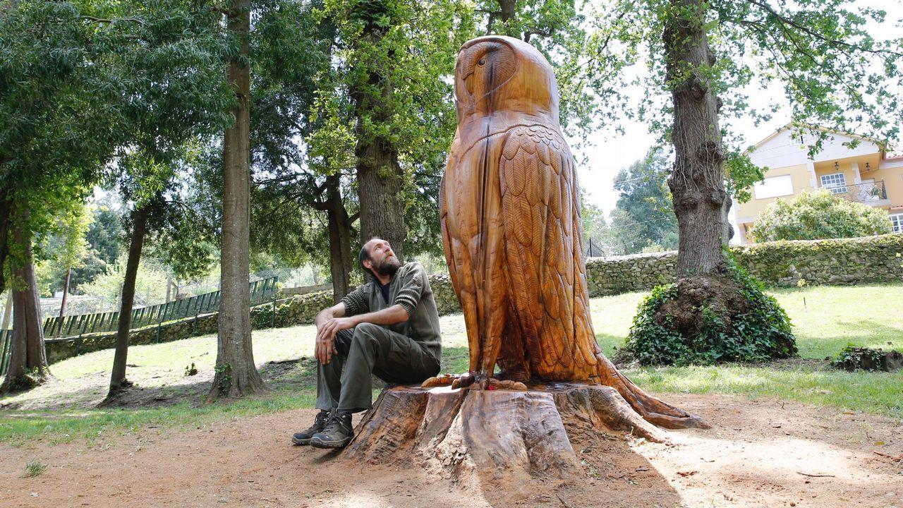 De tallar calabazas a esculpir una lechuza en Briz.