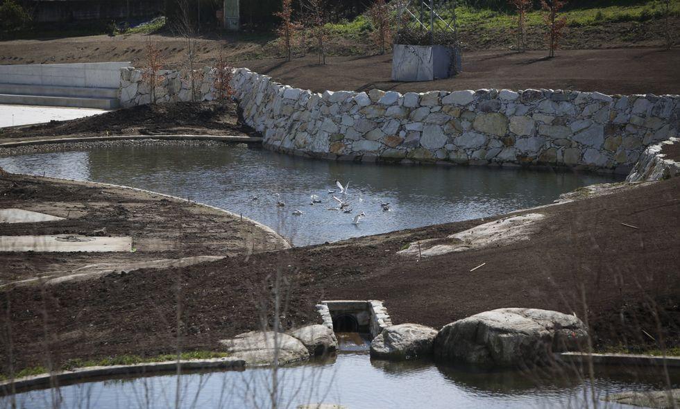 Los estanques del parque, que no está abierto al público, acogen a un grupo de aves.