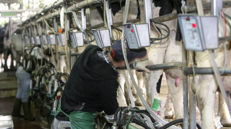 ¿En qué se fija cuando compra un litro de leche?.Un grupo de ganadores, entre ellos Antonio, durante la protesta celebrada en Vilalba el jueves pasado.